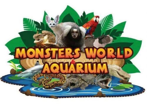 Monster Aquarium แหล่งพิพิธภัณฑ์สัตว์ จ.ชลบุรี